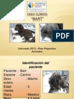 CASO CLÍNICO ÁREA PEQUEÑOS ANIMALES (material de estudio) (2).ppt