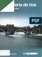Ingeniería de Ríos (Juan Martín Vide).pdf