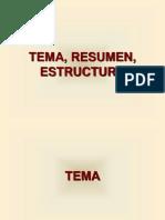 TEMA, RESUMEN, ESTRUCTURA.ppt