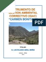 IGAC CARMEN BONITA VI.pdf