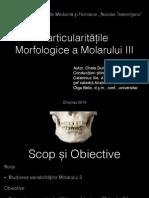 Molarul III.pdf
