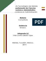 Ensayo de Consultoria.docx