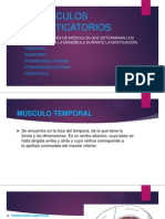 MUSCULOS MASTICATORIOS.pptx
