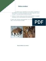 HÁBITO de LOS MINERALES.doc