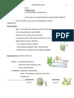tema 2 las plantas lomce.pdf