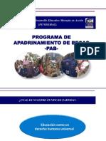 Nueva pres PAB.pdf