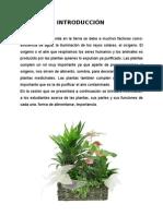 SESEION DE APRENDIZAJE- LA PLANTA