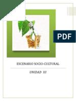 UNIDAD 3 ESCENARIO SOCIO-CULTURAL.docx