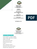 analytical program.docx