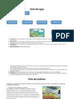 Ciclo_del_agua_y_del_carbono(2).docx