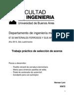 TP Ferrosos - Hernan Levi.pdf