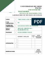 licuefacción.doc