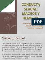 Conducta sexual.pptx