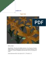 TigerLily.pdf