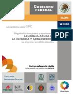 GUIA SSA.pdf