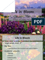 life in bloom - presentation
