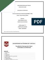 Proceso de enfermeria Cesarea + OTB.pdf