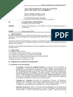 MODELO_DE_INFORME_DE_FLV_Ricardo_llanos_rios_OK[1.doc