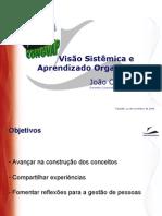 Visao Sistemica e Aprendizado Organizacional