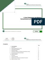 1-Guias-CPIN 2014.pdf