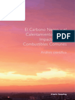 carbono_negro.pdf