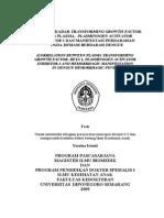 Yusrina_Istanti_Tesis.pdf