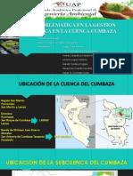 CUENCA DEL CUMBAZA.pdf