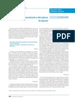 pdf plexo braquial.pdf