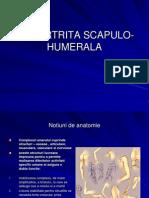 PERIARTRITA SCAPULO-HUMERALA.ppt9.ppt