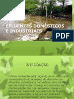 EFLUENTES DOMÉSTICOS E INDUSTRIAIS.pptx