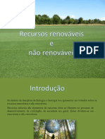 recursos renovaveise nao renovaveis.pptx