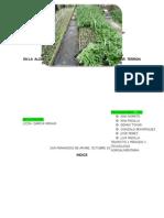 PROYECTO DE   INVESTIGACION ACCCION PARTICIPATIVA  ana.doc