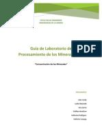 Informe Procesamiento Minerales 2.docx