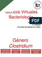 Teorico Virtual Bacteriología.pdf