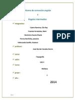 Informe de corrección angular.docx