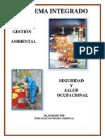 LIBRO DAMASO THOR.pdf