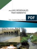 Aguas Residuales-13-3-Ecología.ppt