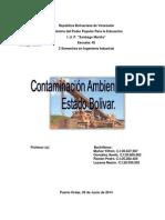 CONTAMINACION EN EL ESTADO BOLIVAR.docx