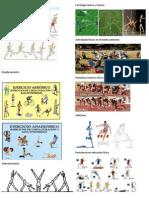 atletismos.docx