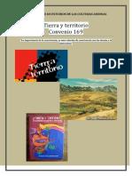 TIRRA Y TERRITORIO IDECA.docx