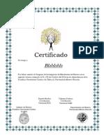 Certificador word.docx