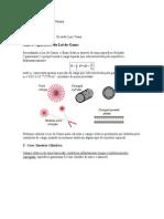 Aplicações da Lei de Gauss.doc