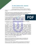 TRATADO DE LIBRE COMERCIO PERU-SINGAPUR.docx