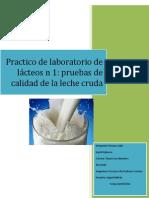 practico lacteos quimico.docx