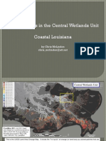 Central Wetlands Unit Subsidence