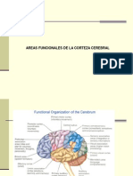 Areas_funcionales.ppt