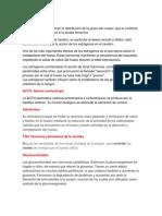 Estrógenospd.pdf