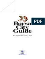 Bursa City Guide 2009