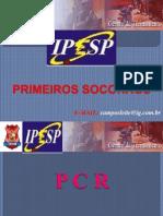 5-cpfl-pcranimaispeonhentostranspdeacidentados-111203034553-phpapp01.ppt