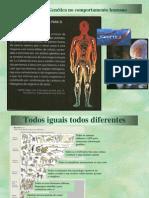 Tema 1 Psicologia B - Genética.ppt